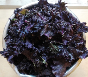 Big bowl of purple kale