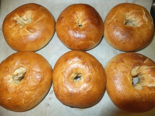 Freshly baked bagels!